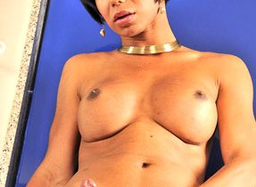 Bangable T-Girl Has Huge Breasts