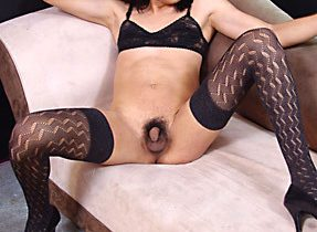Leggy Ladyboy In Provocative Stockings