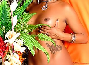 Modeling Latin Tgirl