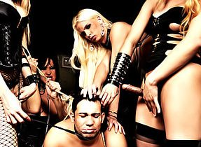Submissive For Ladyboys