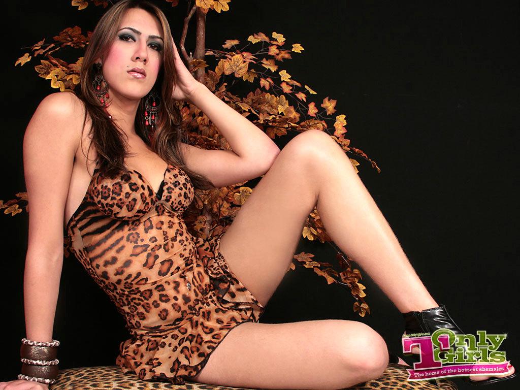 Ts Modeling Nude